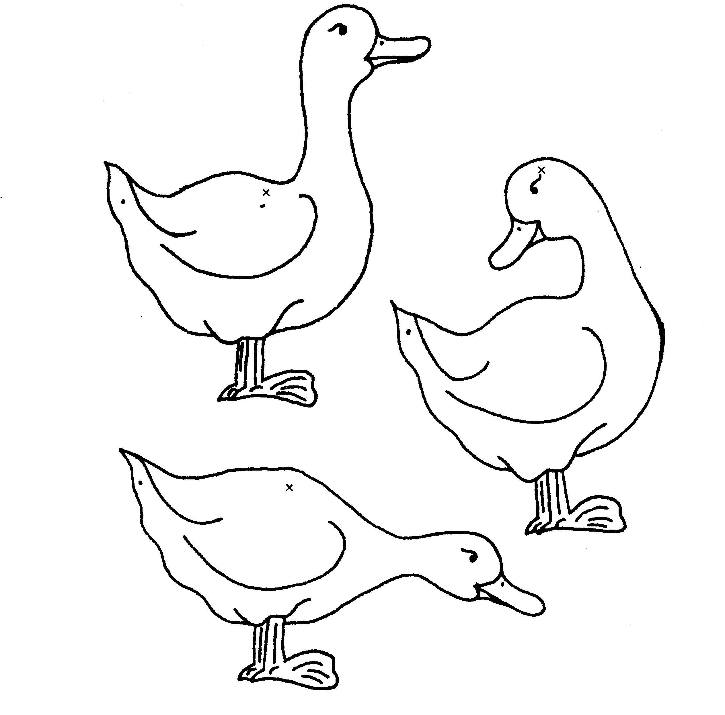 coloriage 14 dessin Canards