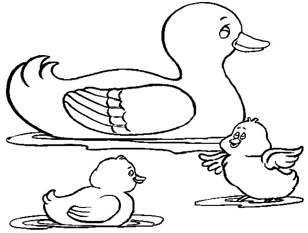 coloriage de canards