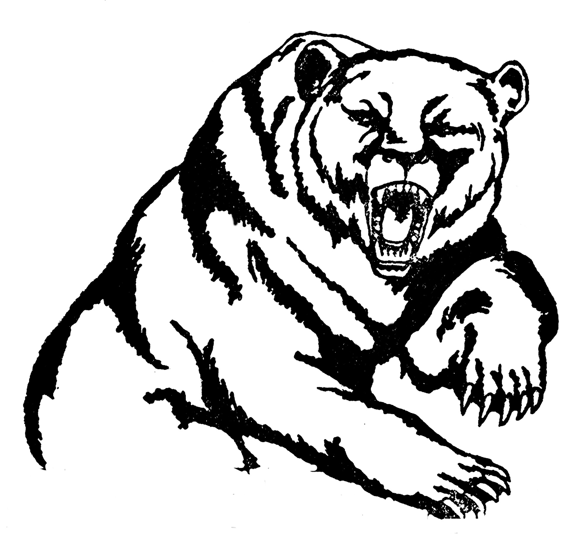 angry bear black and white -#main