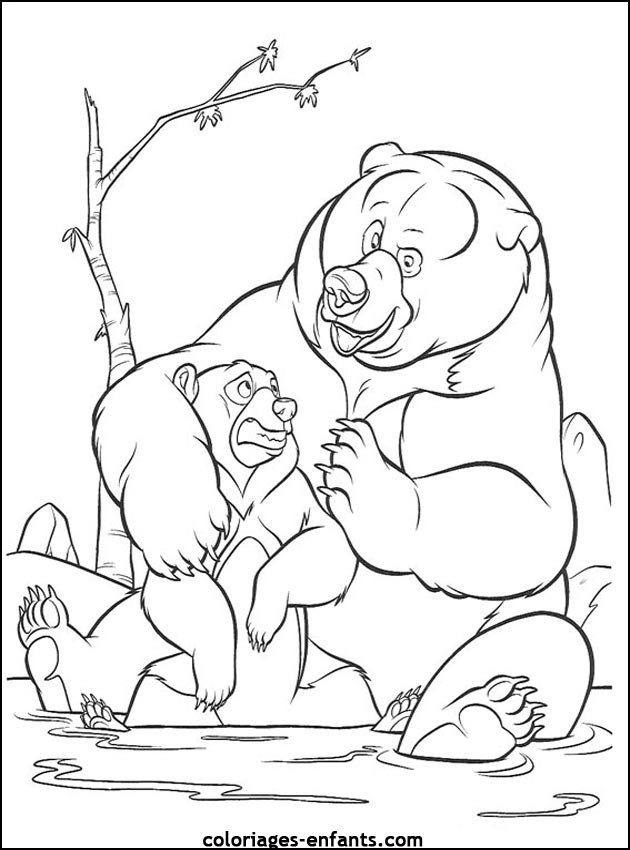 coloriage de grizzly