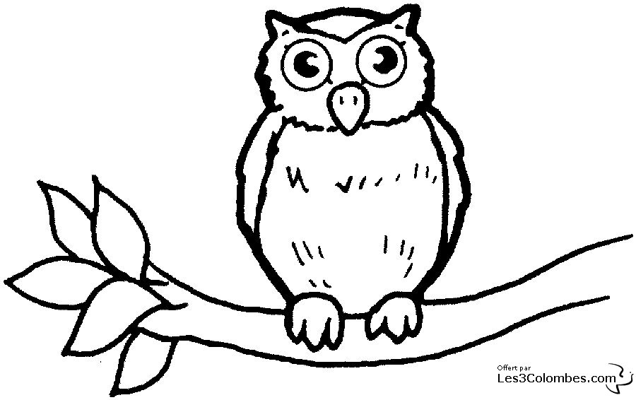 coloriage hibou les beaux dessins de animaux imprimer et colorier page 2. Black Bedroom Furniture Sets. Home Design Ideas