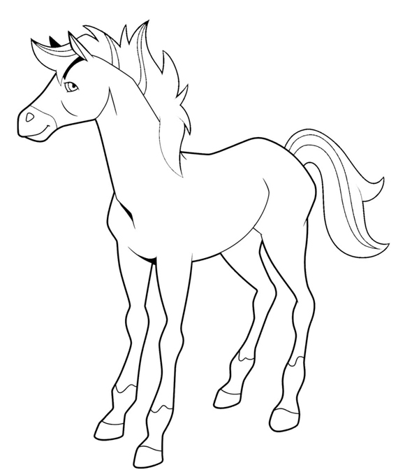 Coloriage horseland les beaux dessins de dessin anim - Dessin du ranch ...