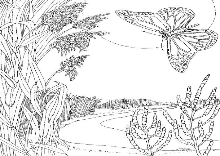 kids coloring pages scenery painting - photo#36