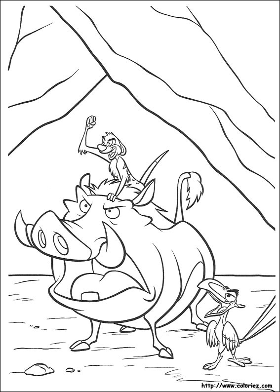 Colorful Coloriage 08 Le Roi Lion Pumbaa Gift - Coloring Pages ...