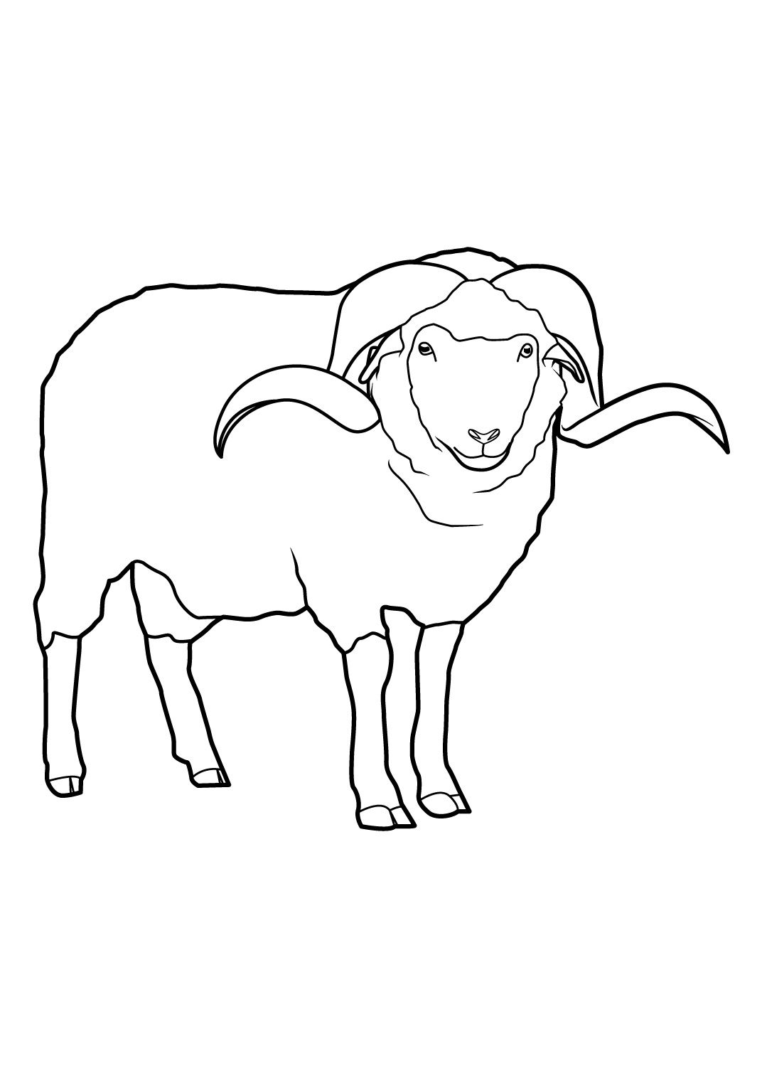 Mouton coloriage the image kid has it - Mouton a dessiner ...