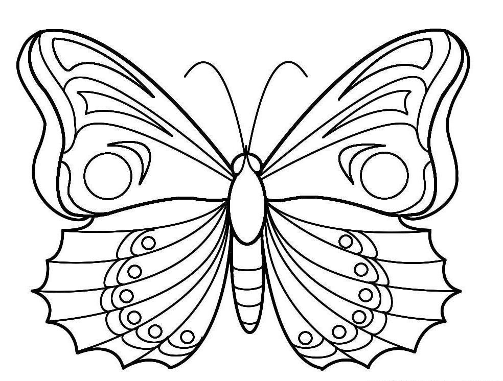 Coloriage papillon difficile les beaux dessins de for Dessins d architecture bricolage